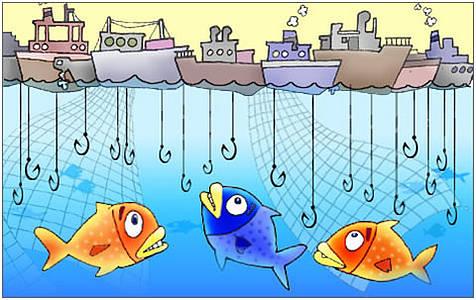 pesca-sostenibile